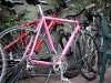 who\'s pink cannondale is it?  envious.